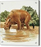 Uintatherium Acrylic Print