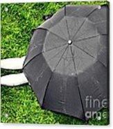 Umbrella Dreams Acrylic Print