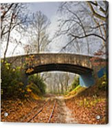 Under And Over  Acrylic Print by Debra and Dave Vanderlaan