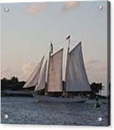 Under Full Sail Acrylic Print