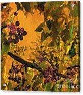 Under The Chokecherry Tree Acrylic Print