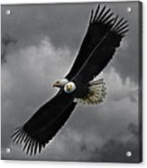 Under The Double Eagle Acrylic Print