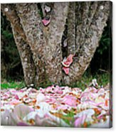 Under The Magnolia Tree Acrylic Print