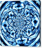 Under The Microscope Acrylic Print
