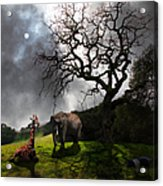 Under The Old Oak Tree - 5d21097 - Square Acrylic Print