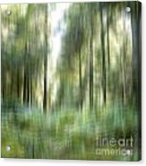 Undergrowth In Spring.  Acrylic Print by Bernard Jaubert