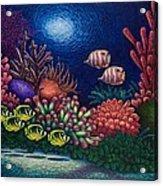 Undersea Creatures Vi Acrylic Print