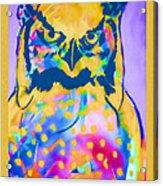 Understated Owl Acrylic Print