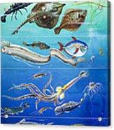 Underwater Creatures Montage Acrylic Print