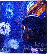 Underwater Swarm Acrylic Print