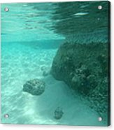 Underwater Tropical Island Photography Acrylic Print