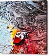 Underworld Feeding Ground Acrylic Print by Petros Yiannakas