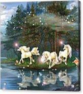 Unicorn Wizard Pool Acrylic Print