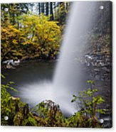 Unique View Of Ponytail Falls Acrylic Print