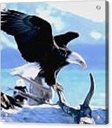 United States King Acrylic Print