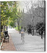 University Of Pennsylvania Walk Acrylic Print