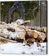 Unloading Firewood 3 Acrylic Print