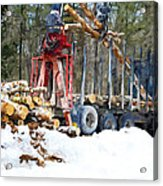 Unloading Of Logs On Transport Acrylic Print
