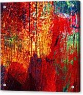 Untamed Colors  Acrylic Print by Prakash Ghai