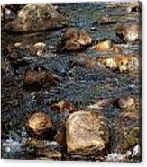 Up A Creek Acrylic Print