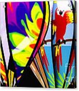 Up And Away V2 Acrylic Print