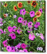 Up Close In The Garden I Acrylic Print
