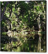 Up The Lazy River  Acrylic Print