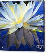 Upekkha Acrylic Print