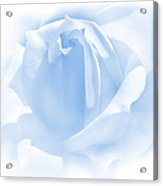 Upon A Cloud Blue Rose Flower Acrylic Print