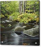Upper Bear River In Early Autumn Nova Acrylic Print