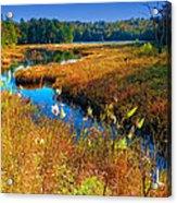 Upper Cary Lake In The Adirondacks Acrylic Print