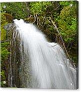 Upper Cougar Falls Acrylic Print
