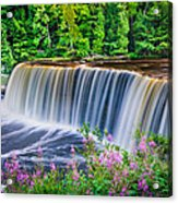 Upper Falls Acrylic Print by Thomas Pettengill