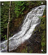 Upper Little Falls Acrylic Print