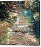 Upstream Acrylic Print