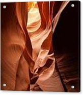 Upward Twist Acrylic Print