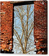 Urban Decay Acrylic Print by Olivier Le Queinec