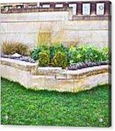 Urban Garden Acrylic Print