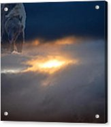 Ursa Major  -  Great Bear Acrylic Print by Kevin Bone
