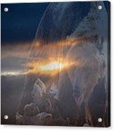 Ursa Major 2 - Great Bear Acrylic Print by Kevin Bone