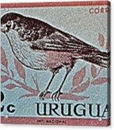 Uruguay Bird Stamp - Circa 1962 Acrylic Print