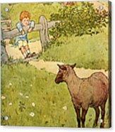 Usa Baa Baa Black Sheep  Book Plate Acrylic Print