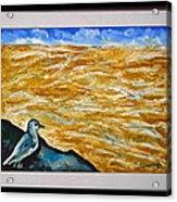U.s.landscape Acrylic Print