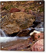 Utah Creek Cascades Acrylic Print