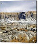 Utah Outback 43 Panoramic Acrylic Print