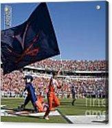 Uva Virginia Cavaliers Football Touchdown Celebration Acrylic Print