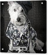 Vacation Dog With Camera And Hawaiian Shirt Acrylic Print
