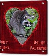 Valentine's Day Greeting Card - Raccoon Acrylic Print