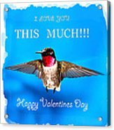 Valentines Day I Love You This Much Acrylic Print