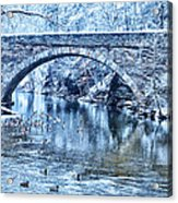 Valley Green Ducks In Winter Acrylic Print